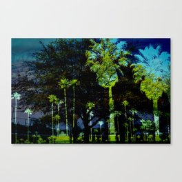 Unzip the bag, and then I palm Trees.  Canvas Print