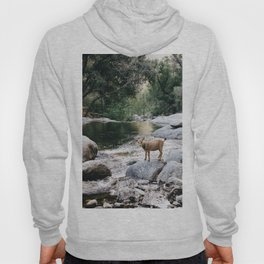 goat creek Hoody