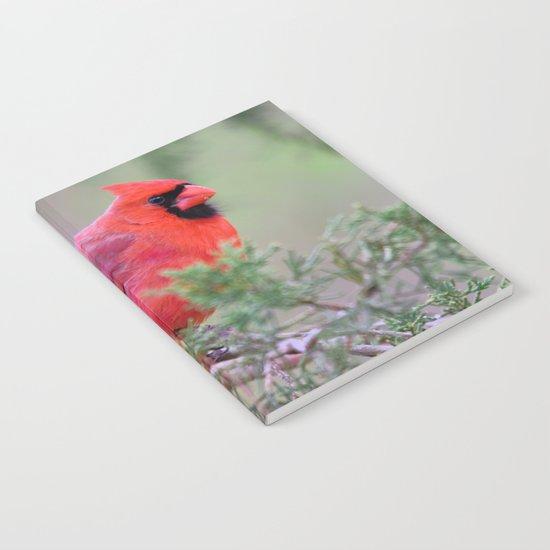 Spring Cardinal Notebook