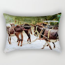 Donkey Team of Four Rectangular Pillow