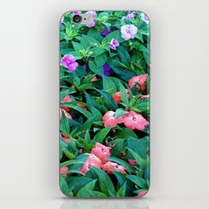 8031 iPhone & iPod Skin