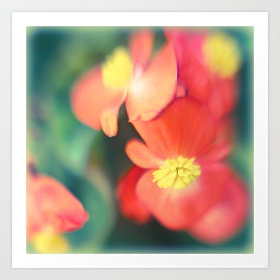 Faded flowers Art Print