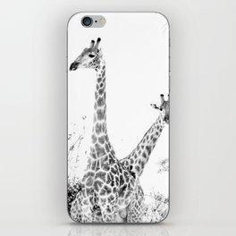 between giraffes iPhone Skin