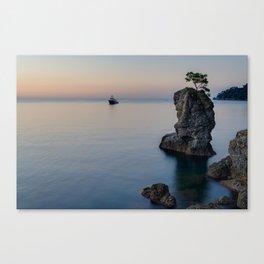 Pine tree rock in Portofino Canvas Print