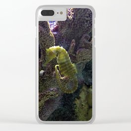 Seahorse Clear iPhone Case