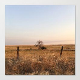 South Bear Creek, Merced, CA Canvas Print