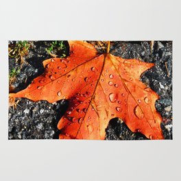 Water Drops On Red Leaf Rug