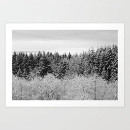 Winter Wanderlust Woods II - Snow Capped Forest Nature Photography Art Print