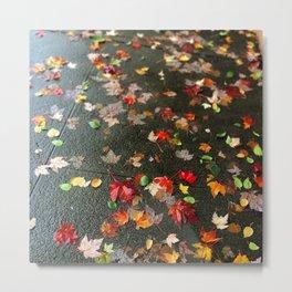 Rainbow of Leaves Metal Print