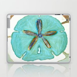 Sand Dollar Star Attraction Laptop & iPad Skin