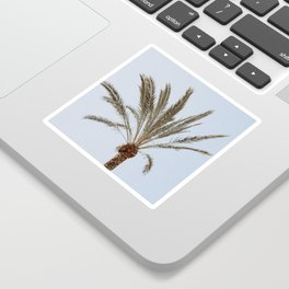 a palm tree ii Sticker