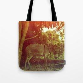 Egyptian Donkey Tote Bag