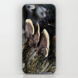 Forest Fungi iPhone Skin