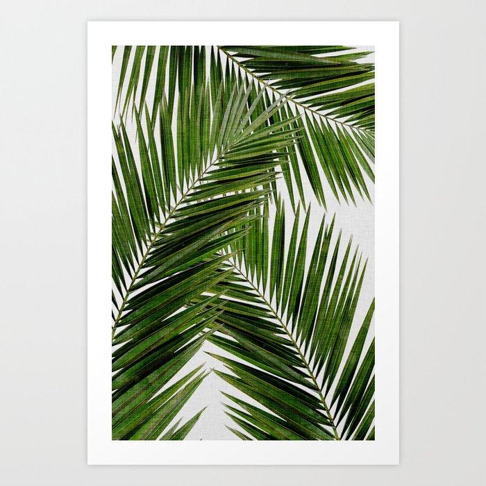 Palm Leaf III Kunstdrucke