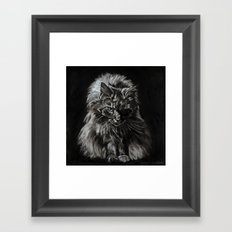 Who's for Dinner? Big Black & White Main Coon Cat Framed Art Print