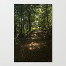 Witchcraft Trail Canvas Print