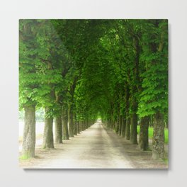 The gardens of the castle of Fontainebleau Metal Print