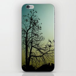Spindly Tree iPhone Skin