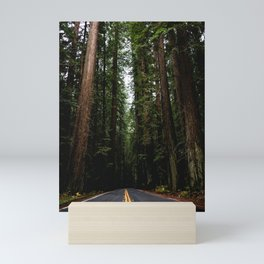 The Road to Wisdom - Nature Photography Mini Art Print