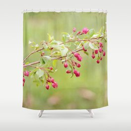 Berry Blossoms Shower Curtain