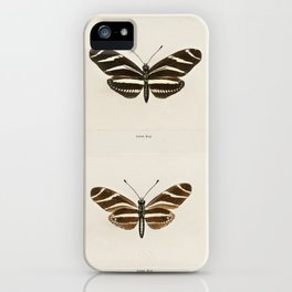 Zebra Longwing (Heliconia Charitonia) from Moths and butterflies of the United States (1900) by Sher iPhone Case
