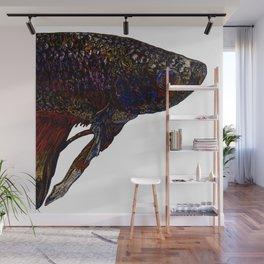 Betta Fighting Fish Head Wall Mural