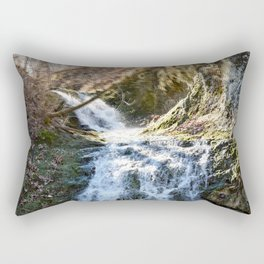 Alone in Secret Hollow with the Caves, cascades, and Critters, No.4 of 21 Rectangular Pillow