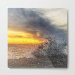 Sea's a Wild One Metal Print