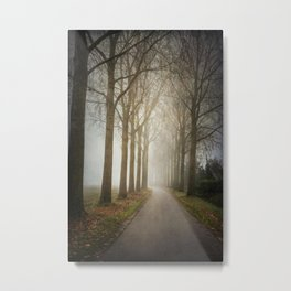 Through the Misty Wood II Metal Print