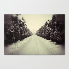Avenue during a snowing. Canvas Print