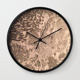 itchy series: no. 2 Wall Clock