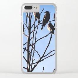 cedar waxwings Clear iPhone Case