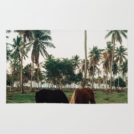 Horses in Samana, Dominican Republic Rug