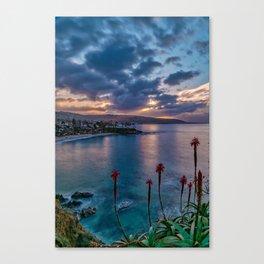 Aloe Sunrise Canvas Print