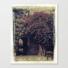 Mission Bougainvillea Canvas Print