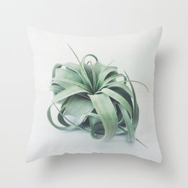 Air Plant III Throw Pillow