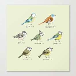 The Tit Family Canvas Print