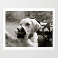 Puppy life.  Art Print