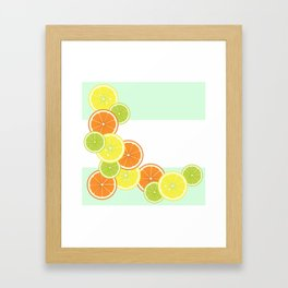 Citrus Fruits Framed Art Print