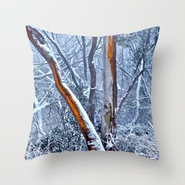 Land and Seascapes Throw Pillow