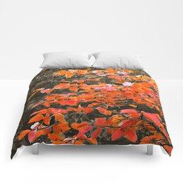 Végétal - Arbre 1 Comforters