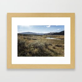 Waiting for Wolves in Lamar Valley - Yellowstone Framed Art Print