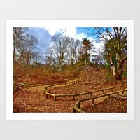 Lost in the woods, a trail. Art Print