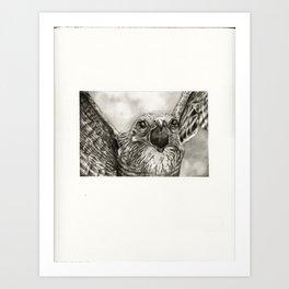 untitled (death) Art Print
