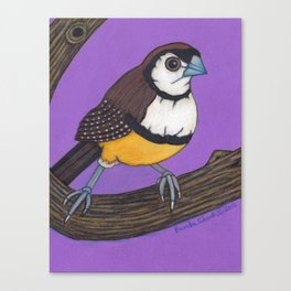 Owl Finch on Branch with Purple Sky, colored pencil, 2010 Canvas Print