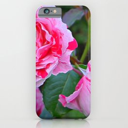 Pink Roses by Lika Ramati iPhone Case