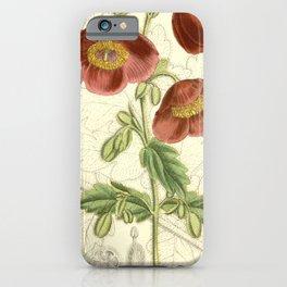 Flower 6760 meconopsis wallichii fusco purpurea iPhone Case