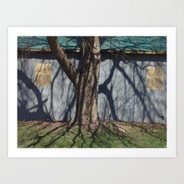 trunk shadow Art Print