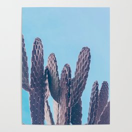 Cactus Photography Print {3 of 4} | Cool Blue Succulent Plant Nature Western Desert Design Decor Poster
