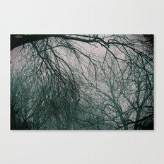 tangle Canvas Print